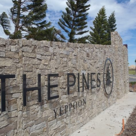 the_pines